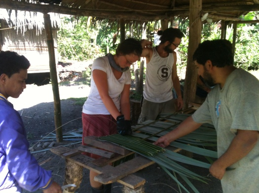 Learning how to make thatched roof with local artisans. It is incredible to see the entirety of this species of palm, Llolila get used for roof thatching.